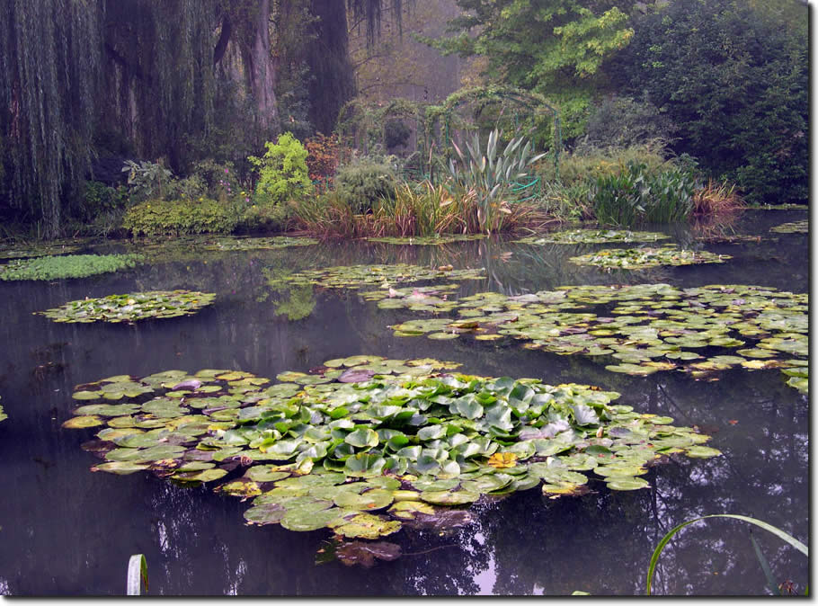 Water Lilies 65Χ85 εκ. by Monet No 2